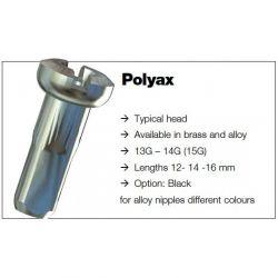 Sapim Spaaknippel Polyax SILS lengte 16mm vernikkeld messing  (p.st)